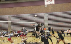 Volleyball: Spartans prove to be too much as Hawks lose at home